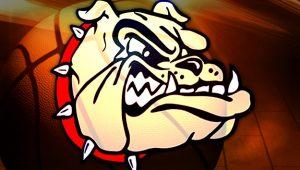 red-collar-dog